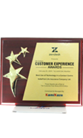 Customer Experience Award